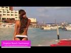 Banded Thong Bikini