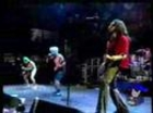 red hot chili peppers - sir psycho sexy (live)