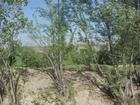 Bienvenue à Herat, Afghanistan