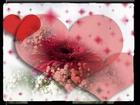 etkin_ sen beni sevmesende