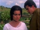 Kati Patang - Pavitra Prem - Asha Parekh & Rajesh Khanna - Bollywood Classic Romantic Scenes
